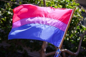 The_bisexual_pride_flag_3673713584